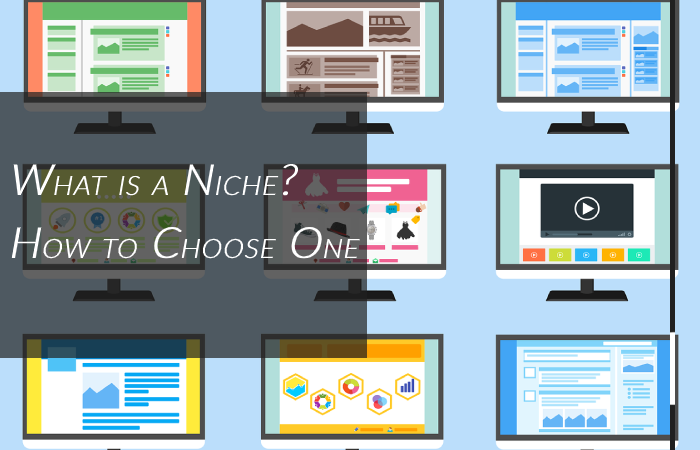 What is a niche and how to pick a niche